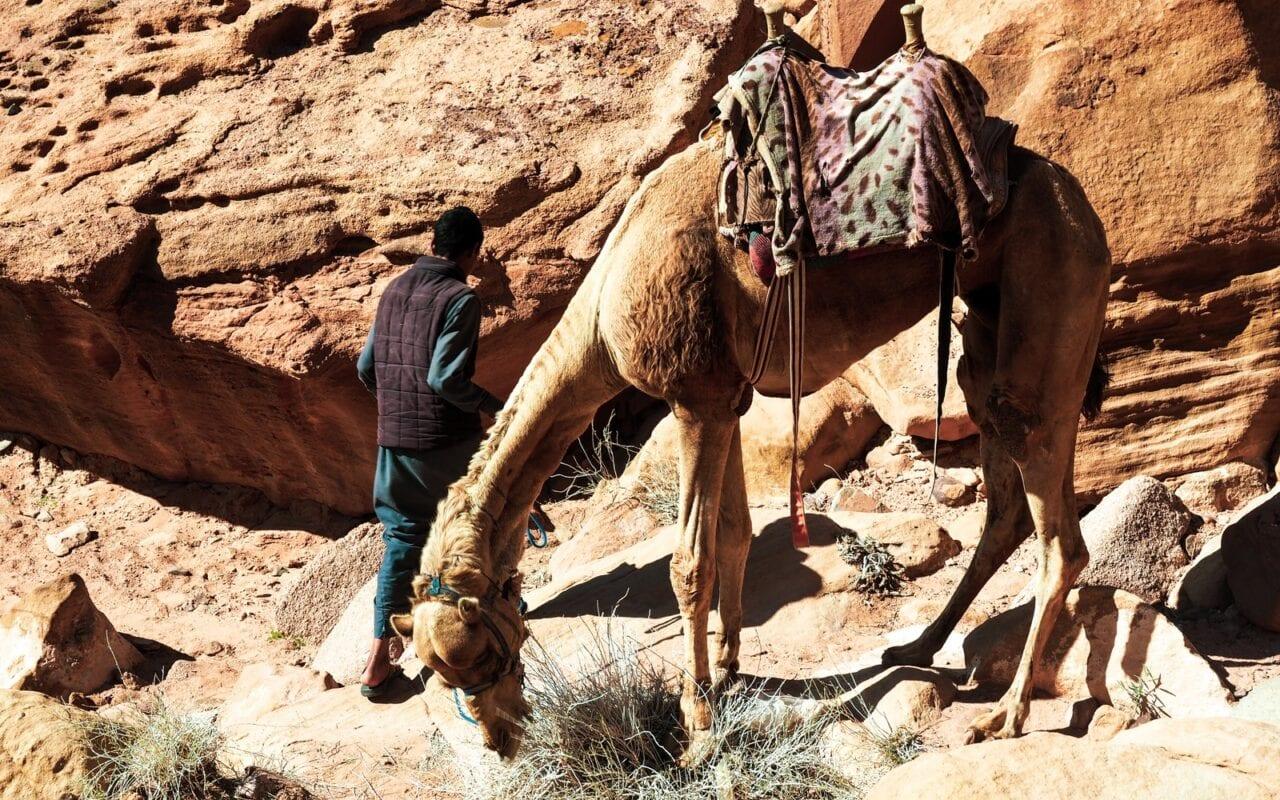 widoki na pustyni Wadi Rum