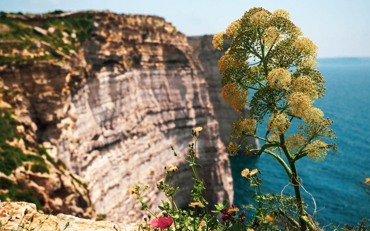 klify sanap na Gozo
