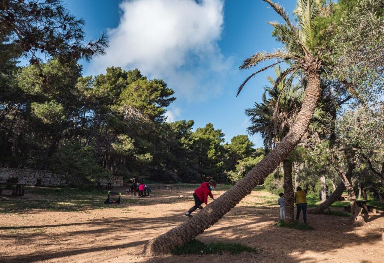 malta-atrakcje